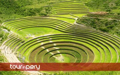 Moray Maras Tour on Bike – One day