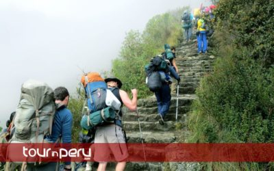 MachuPicchu Wonder and Huayna Picchu Mountain Tour – 1 Day